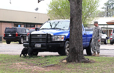 Bomb sniffing dogs from Ft. Polk check out Chester ISD Campus